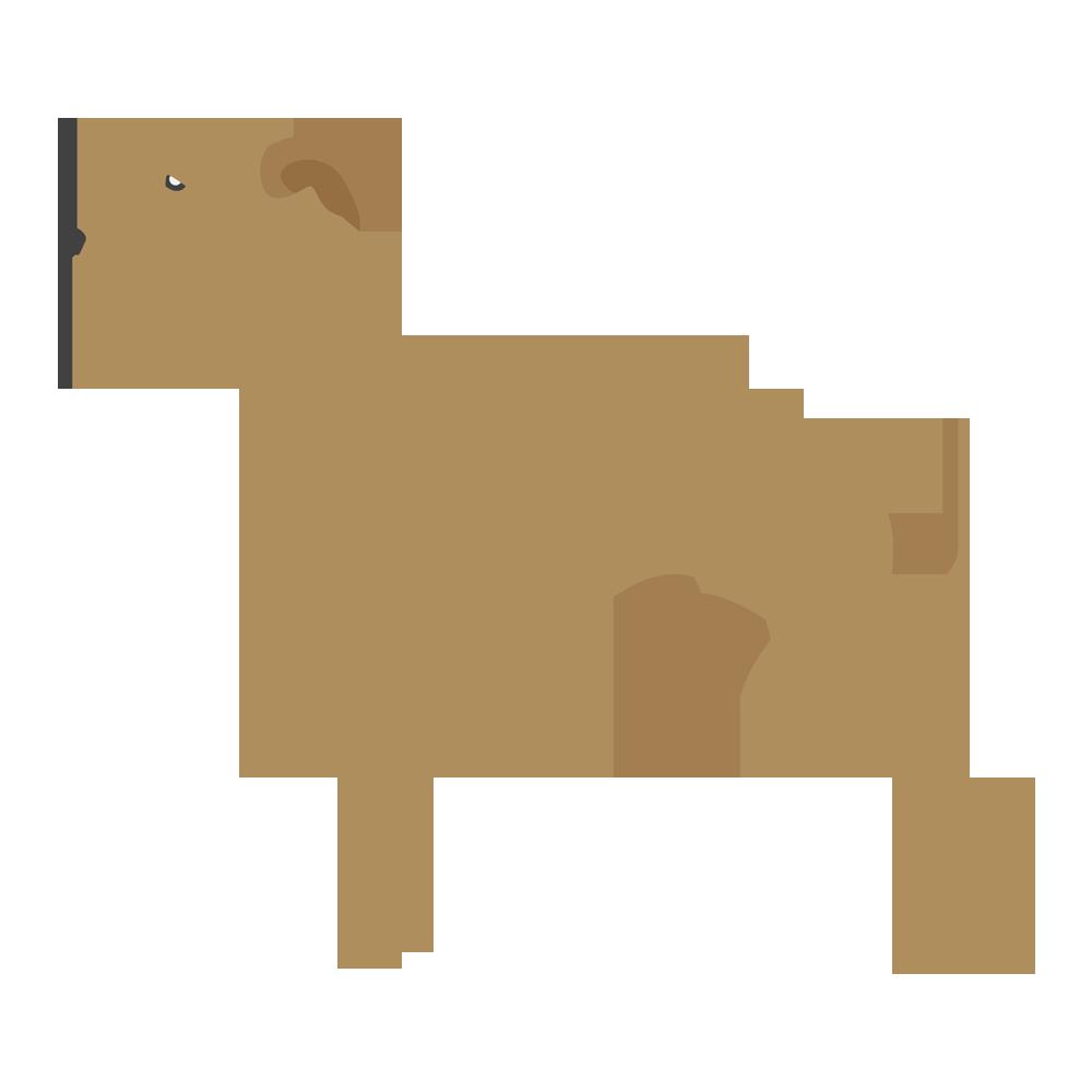 Pet Fans Club – Más que un domicilio para tu mascota. Un club para ti. 298d3dc7af0